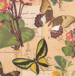 PAPEL DECORACION MARIPOSAS VINT. 70x100